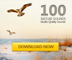 Nature Sound Pack